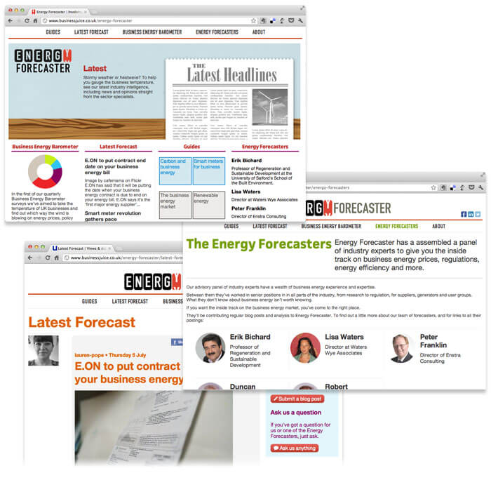 Energy Forecaster web design and illustration